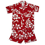 Hibiscus Print Boys Toddler Cabana Set